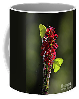 Coffee Mug featuring the photograph Color On Citico by Douglas Stucky