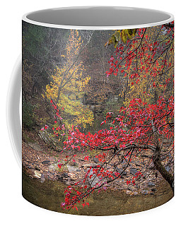 Color Pop Coffee Mug