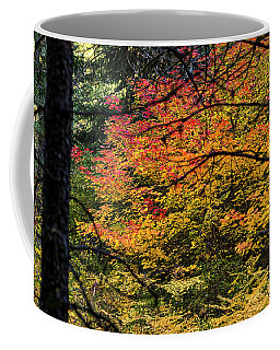 Cascade Mountain Range Fall Color Coffee Mug