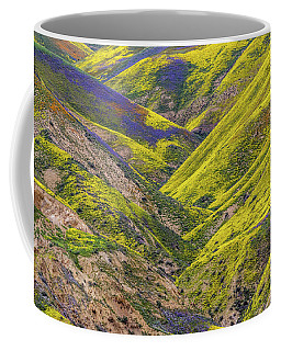 Color Valley Coffee Mug by Peter Tellone