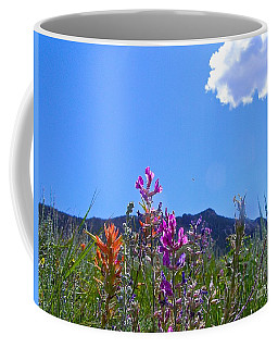 Colorado Colors Coffee Mug