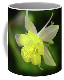 Coffee Mug featuring the photograph Colorado Columbine by Marie Leslie
