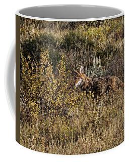 Colorado Coyote Coffee Mug