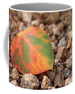 Coffee Mug featuring the photograph Colorado Fall Colors by Christin Brodie