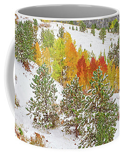 Colorado Is Stunningly Beautiful. Here's One Example Among Countless Others.  Coffee Mug