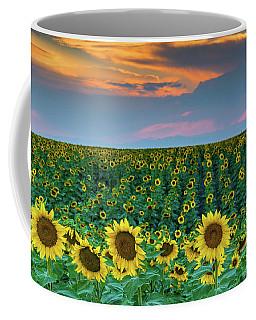 Colorado Sunflowers And Sunset Coffee Mug