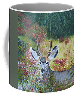 Colorado White Tail Deer Coffee Mug