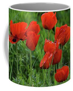 Colorado Wild Poppies Coffee Mug