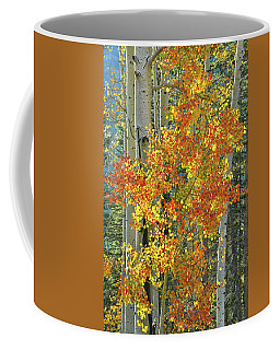 Colorful Aspen Along Million Dollar Highway Coffee Mug