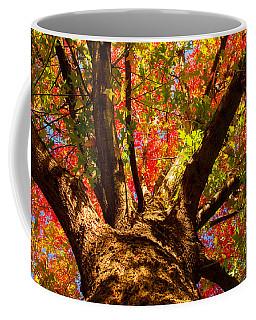Colorful Autumn Abstract Coffee Mug