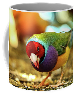 Colorful Bird Coffee Mug