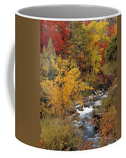 Colorful Canyon Coffee Mug by Leland D Howard