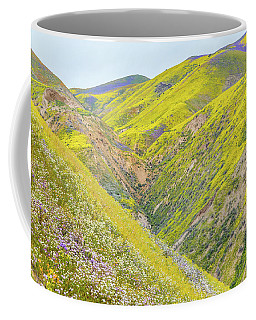 Coffee Mug featuring the photograph Colorful Canyon by Marc Crumpler
