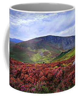 Coffee Mug featuring the photograph Colorful Carpet Of Wicklow Hills by Jenny Rainbow