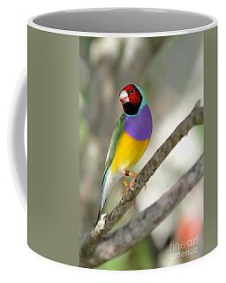 Colorful Gouldian Finch Coffee Mug