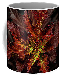 Coffee Mug featuring the photograph Colorful Leaves by Paul Freidlund