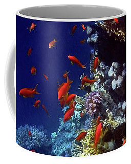 Colorful Lyretail Anthias Coffee Mug
