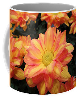 Coffee Mug featuring the photograph Colorful Mums by Ray Shrewsberry