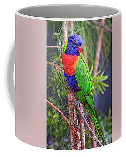 Colorful Parakeet Coffee Mug by Stephanie Hayes
