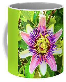 Colorful Passiflora Flower Of Bermuda Coffee Mug