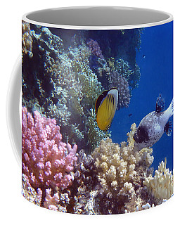 Colorful Red Sea Fish And Corals Coffee Mug