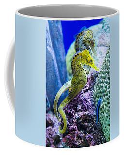 Colorful Seahorses Coffee Mug
