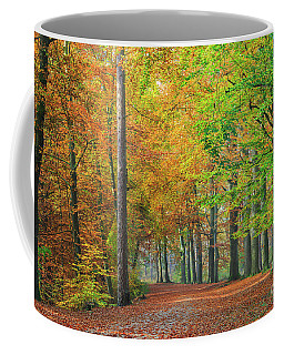 Colors Of An Autumn Forest  Coffee Mug