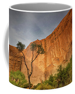 Colors Of Bliss Coffee Mug