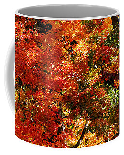 Coffee Mug featuring the photograph Colors Of Fall by William Selander