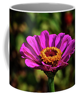 Coffee Mug featuring the photograph Colors Of Nature 028 by George Bostian
