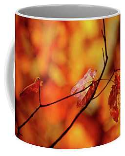 Coffee Mug featuring the photograph Colors by Robert Geary