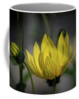 Colour Of Sun Coffee Mug