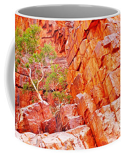 Colours Of Ormiston Gorge, Northern Territory Coffee Mug