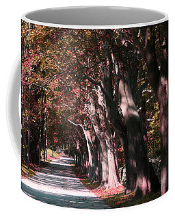 Colt State Park Bristol Rhode Island Coffee Mug
