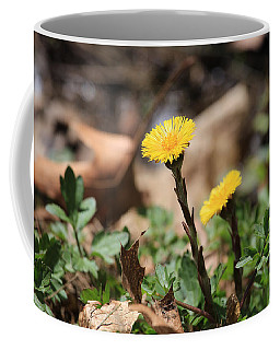 Coltsfoot Coffee Mug