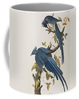 Columbia Jay Coffee Mug