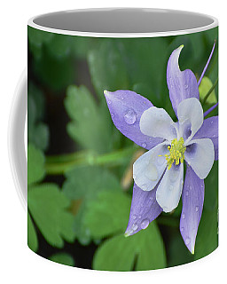 Columbine After A Shower Coffee Mug