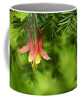Columbine Blossom Coffee Mug