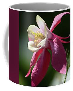 Columbine Close Up Coffee Mug by Cindy Manero