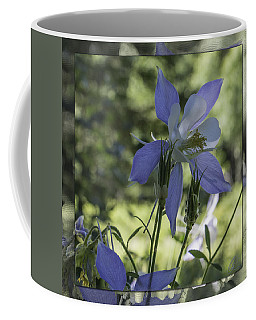 Columbine With Styalized Border Coffee Mug