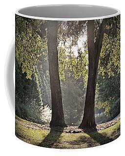 Come On Spring Coffee Mug by Phil Mancuso