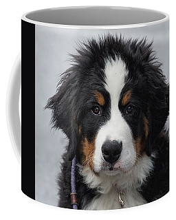 Come Play With Me Coffee Mug