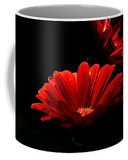 Coming In To The Light Coffee Mug by Sheila Brown