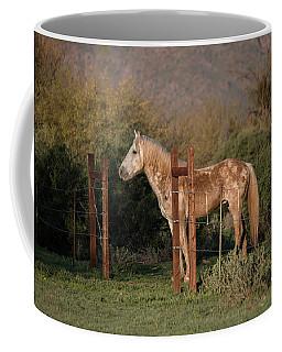 Coming Through The Fence Coffee Mug
