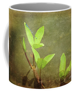 Common Blue Damselfly Coffee Mug