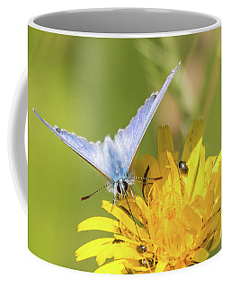 Common Blue Coffee Mug