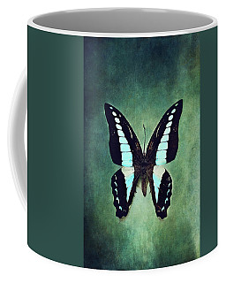 Common Bluebottle Butterfly Coffee Mug