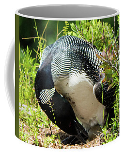 Common Loon Egg Adjustment Coffee Mug