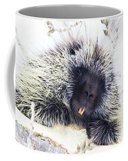 Common Porcupine Coffee Mug