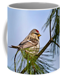 Coffee Mug featuring the photograph Common Redpoll Bird by Christina Rollo